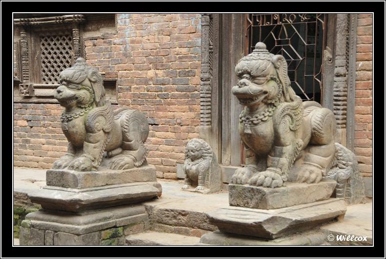 Népal - Novembre 2010 Yd1_0621