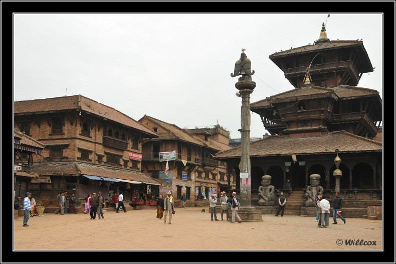Népal - Novembre 2010 Yd1_0630