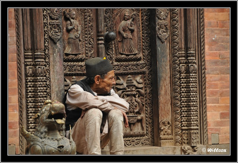 Népal - Novembre 2010 Yd1_0631