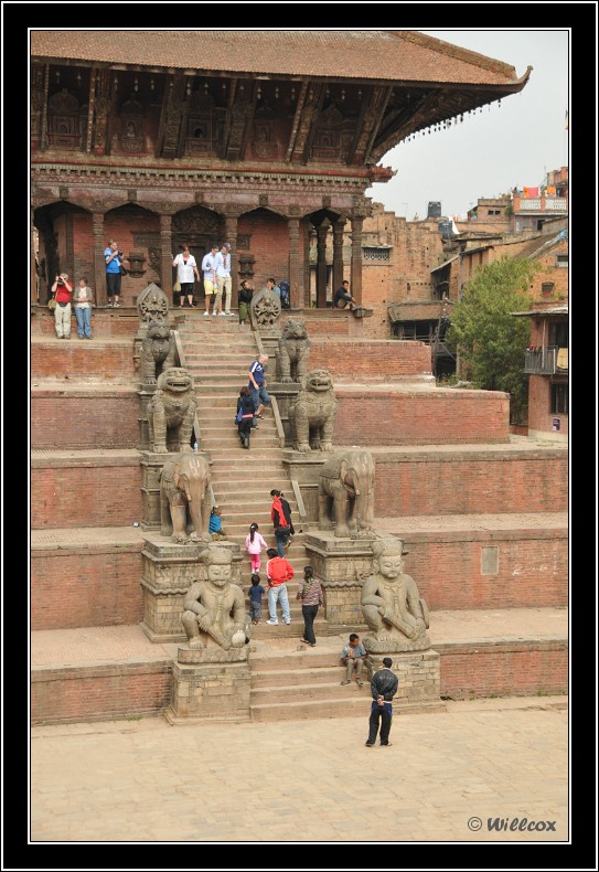 Népal - Novembre 2010 Yd1_0638