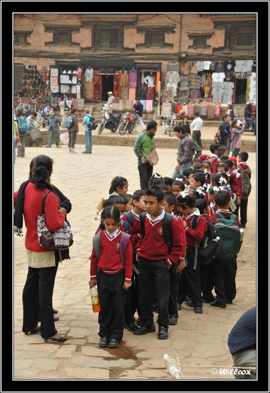 Népal - Novembre 2010 Yd1_0639