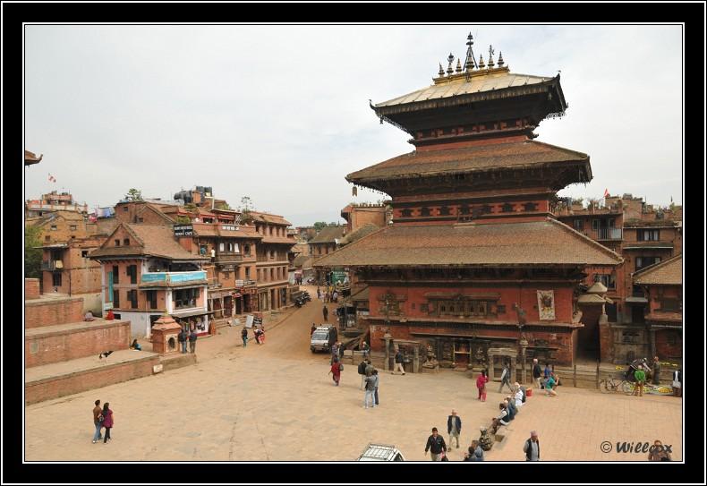 Népal - Novembre 2010 Yd1_0640