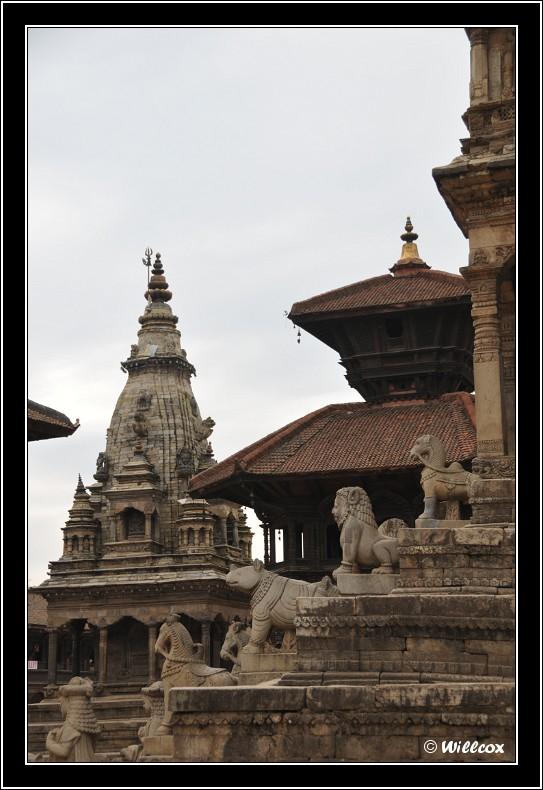 Népal - Novembre 2010 Yd1_0713