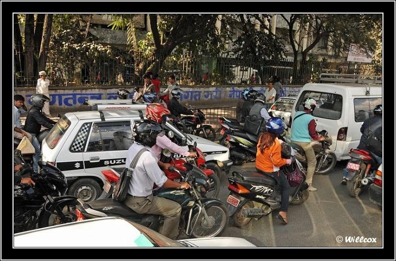 Népal - Novembre 2010 Yd1_0915