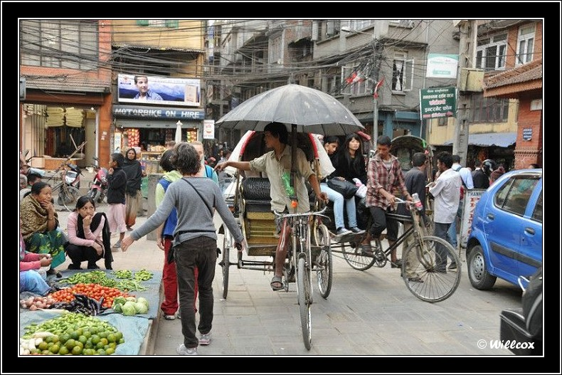 Népal - Novembre 2010 Yd1_0917