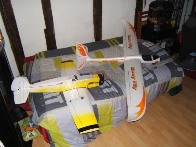 Moto-planeur Easyfly et navion Dscf3729