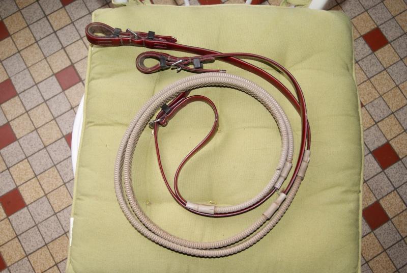 AV Bridon/licol norton + rênes couleur BORDEAUX Dsc05611