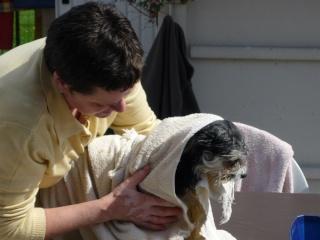 lavage des filles P1030720