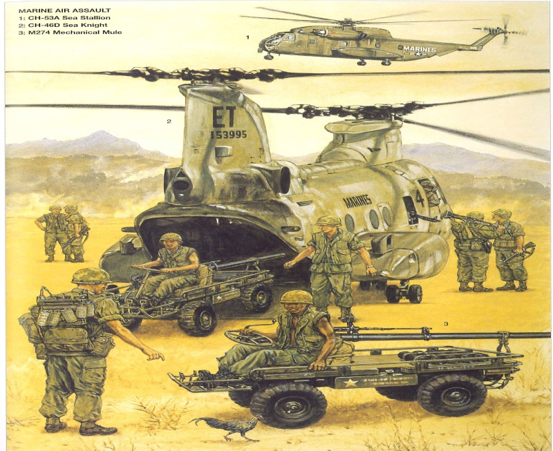 M247 Mule Mula_710