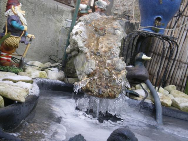 Aménagements du bassin! Imgp6323