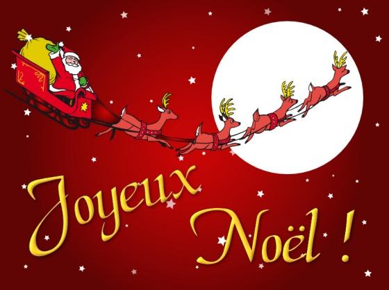 Joyeuses fêtes de fin d'année! Noel2010