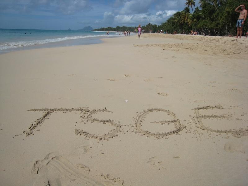 Les Salines sous le soleil (coucou de la Martinique) 01010