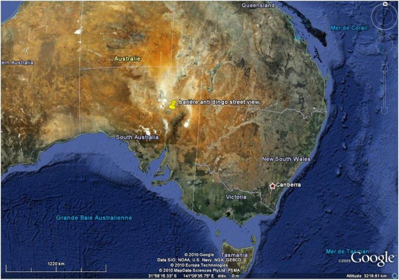 Cloture anti dingo / dingo fence Australie Austra10