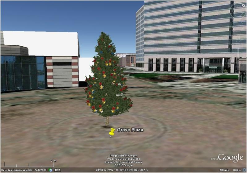 Les sapins de Noël sous Google Earth [modélisation 3D] Grove_10