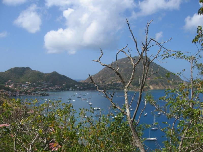 Les îles de la Caraïbe - Page 3 Img_2610