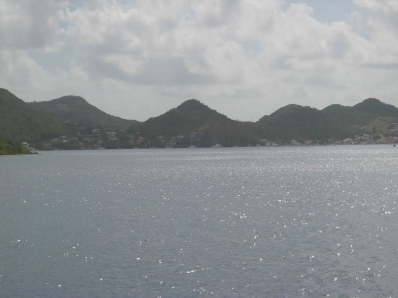 Les îles de la Caraïbe - Page 3 Img_2621