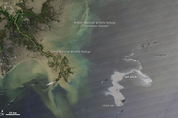 La Marée Noire causée par BP (Louisiane, Nouvelle Orléans) Marb410