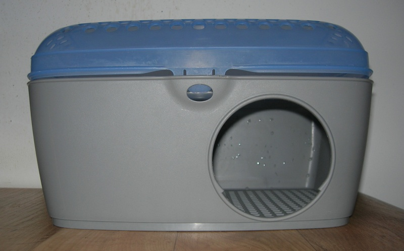 A cloturer SVP Dscn5023