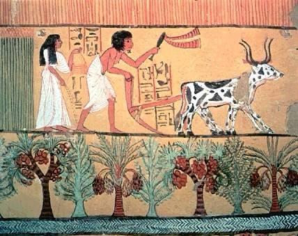 تاريخ مصر القديمة من عصر بداية الاسرات الي الدولة الحديثة واشهر ملوكها  07010