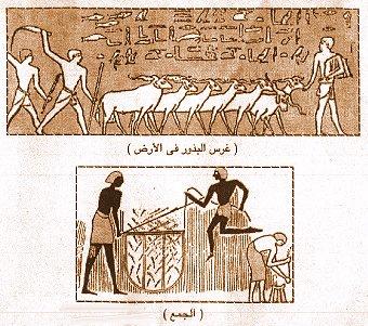 تاريخ مصر القديمة من عصر بداية الاسرات الي الدولة الحديثة واشهر ملوكها  07110