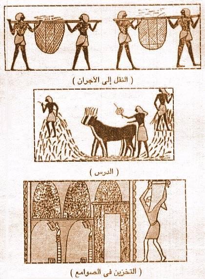 تاريخ مصر القديمة من عصر بداية الاسرات الي الدولة الحديثة واشهر ملوكها  07210