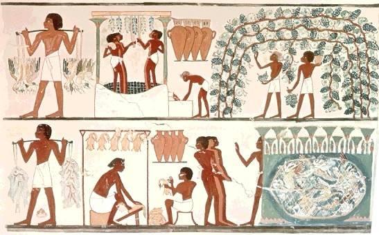 تاريخ مصر القديمة من عصر بداية الاسرات الي الدولة الحديثة واشهر ملوكها  07311