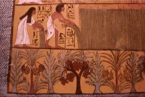 تاريخ مصر القديمة من عصر بداية الاسرات الي الدولة الحديثة واشهر ملوكها  10310