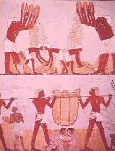 تاريخ مصر القديمة من عصر بداية الاسرات الي الدولة الحديثة واشهر ملوكها  10410