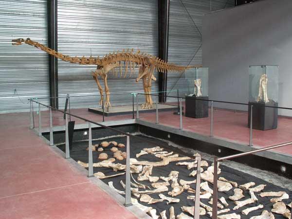 كل شيء عن الدايناصورات بالصور والفيديو 1310