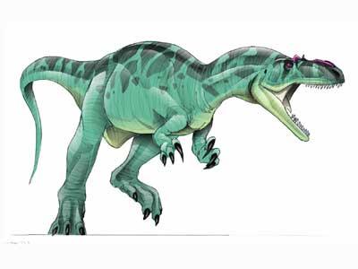 كل شيء عن الدايناصورات بالصور والفيديو 1_2410
