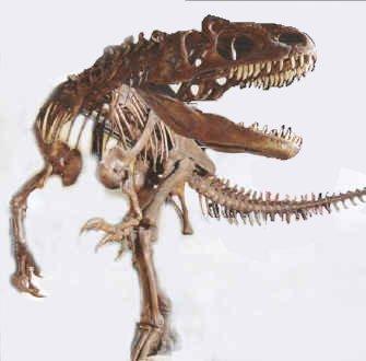 كل شيء عن الدايناصورات بالصور والفيديو 1_2510