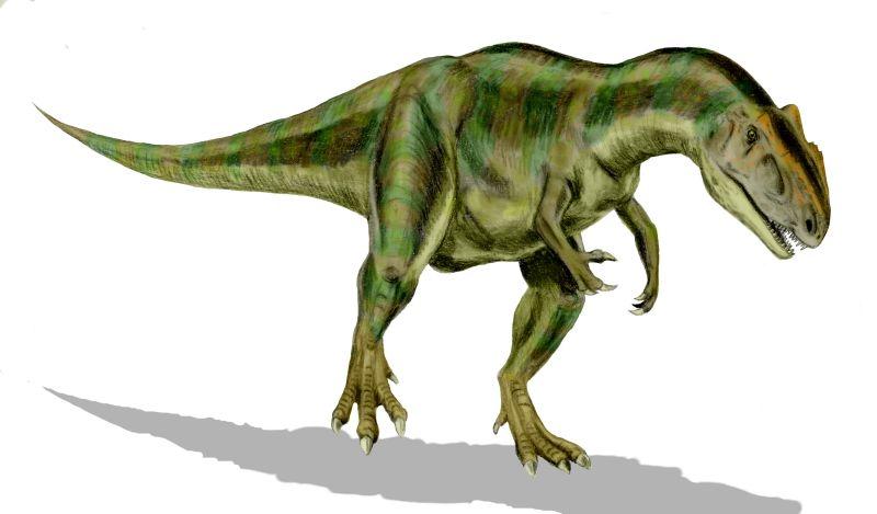 كل شيء عن الدايناصورات بالصور والفيديو 1_2810