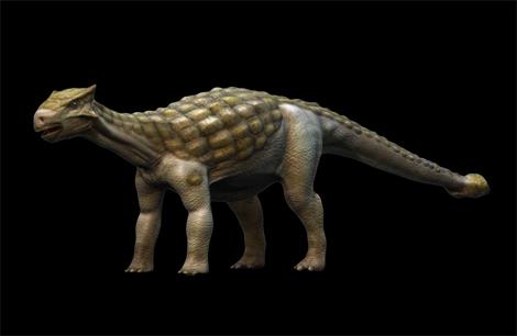 كل شيء عن الدايناصورات بالصور والفيديو 1_3210