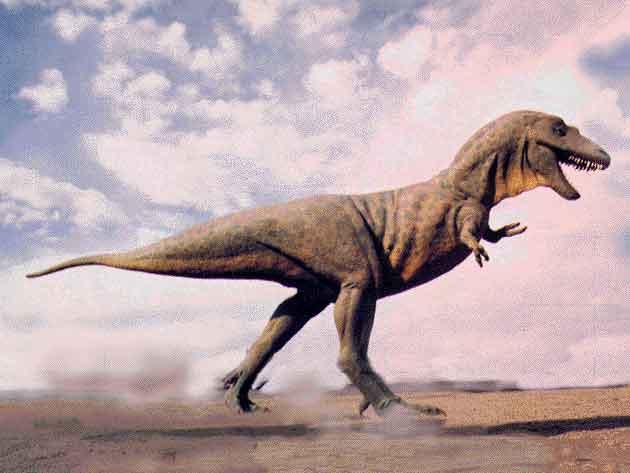 كل شيء عن الدايناصورات بالصور والفيديو 1_4010