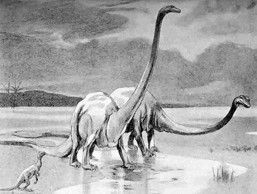 كل شيء عن الدايناصورات بالصور والفيديو 1_410