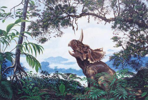 كل شيء عن الدايناصورات بالصور والفيديو 1_4510