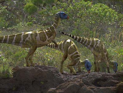 كل شيء عن الدايناصورات بالصور والفيديو 1_7310