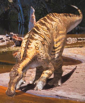 كل شيء عن الدايناصورات بالصور والفيديو 1_7710