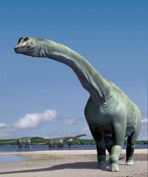 كل شيء عن الدايناصورات بالصور والفيديو 213