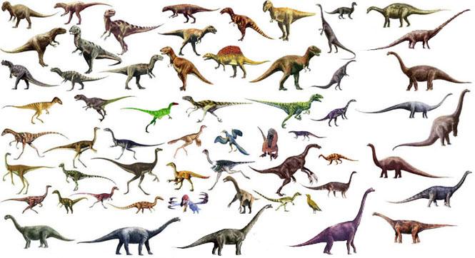 كل شيء عن الدايناصورات بالصور والفيديو 214