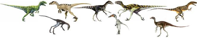 كل شيء عن الدايناصورات بالصور والفيديو Carnos11