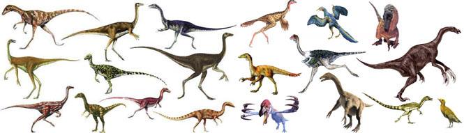 كل شيء عن الدايناصورات بالصور والفيديو Carnos12