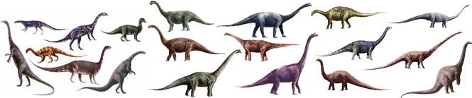 كل شيء عن الدايناصورات بالصور والفيديو Carnos13