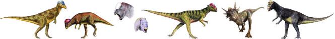كل شيء عن الدايناصورات بالصور والفيديو Carnos20