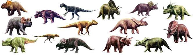 كل شيء عن الدايناصورات بالصور والفيديو Carnos21