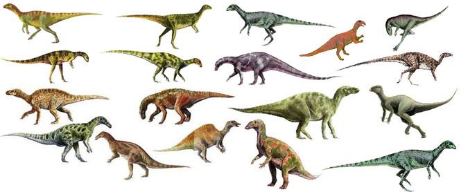 كل شيء عن الدايناصورات بالصور والفيديو Carnos22