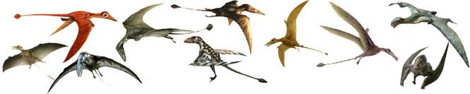 كل شيء عن الدايناصورات بالصور والفيديو Carnos24