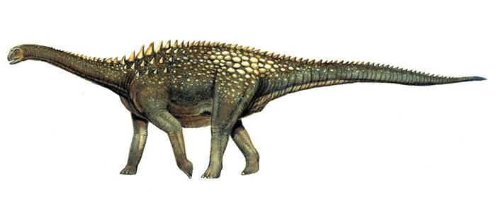 كل شيء عن الدايناصورات بالصور والفيديو Carnos33