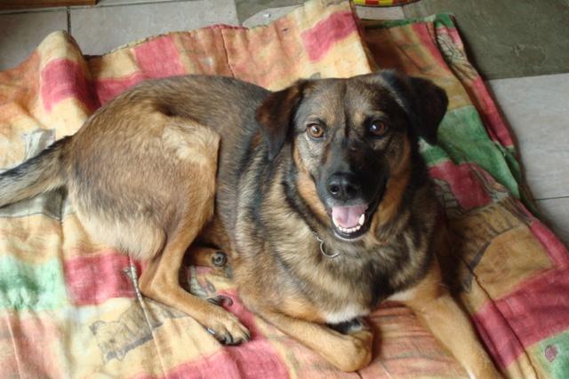 Décembre 2009 Bubu5110