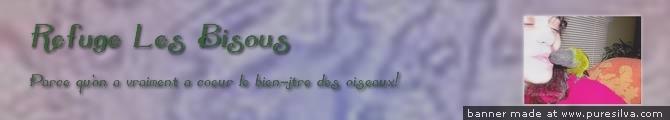 forum d'oiseaux !fleur Lesbis10